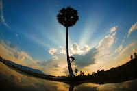 Hình ảnh đẹp nhất về làng quê Việt Nam 2013