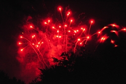 Rote Feuerblumen...