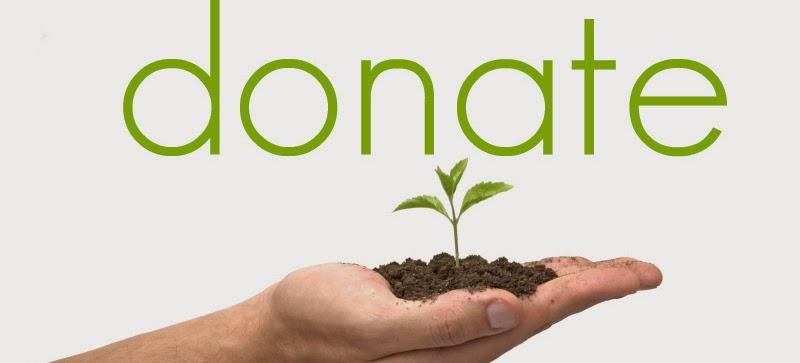 Support Stewardship