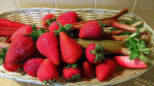 Basket of Strawberries and Rhubarb