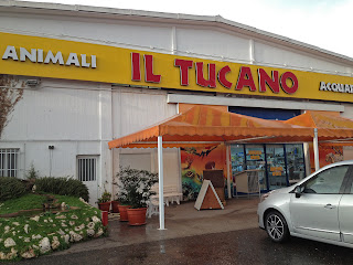 Flying Dogs To Italy : Rome's Il Tucano pet store where we purchased grain free dog food