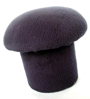 ø Maui Mushroom Identification, , identify magic mushrooms in