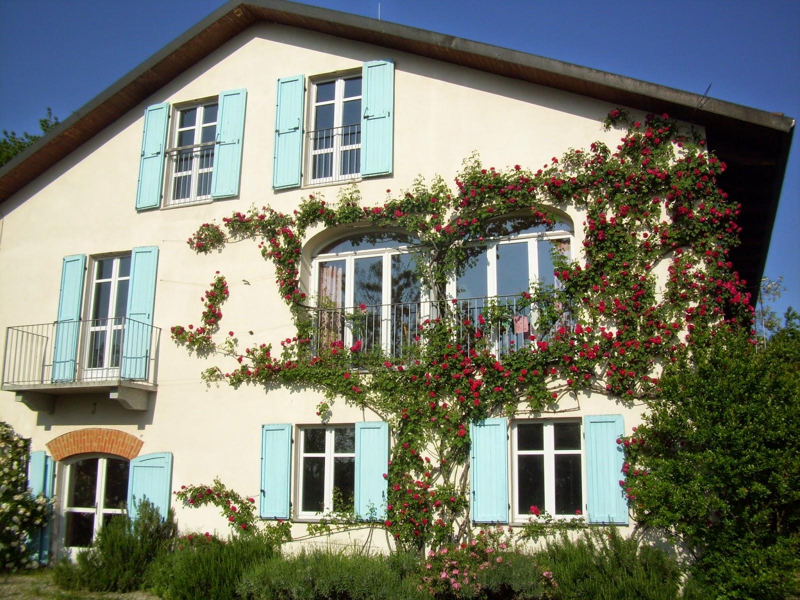 Foto che inquadra la facciata de Il Bricco con i finestroni avvolti dal meraviglioso roseto magenta