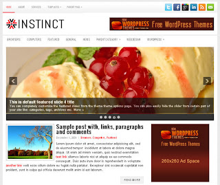 WordPress-Template Instinct
