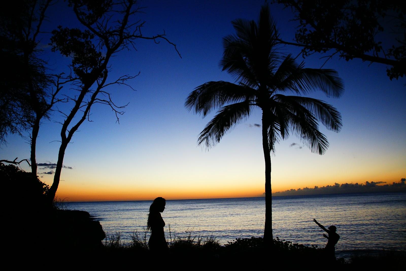Dgc S Hawaii Hiking Tales 8 25 2012 Lahilahi Black Rock