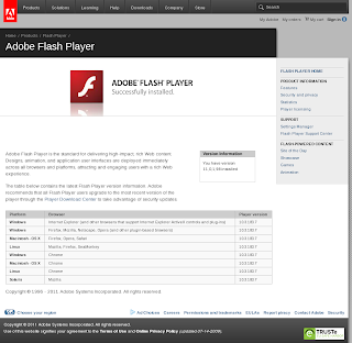 flashplayer11beta2.05.png