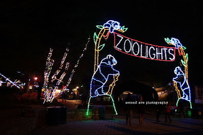 washington dc, national zoo, zoo lights, festive, Virginia photographer, project 52, photoblog, blog hop, night photography,