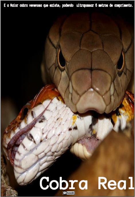 E BOOK Cobra Real 1ª Edição