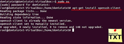 DominioTXT - Instalar openssh-client
