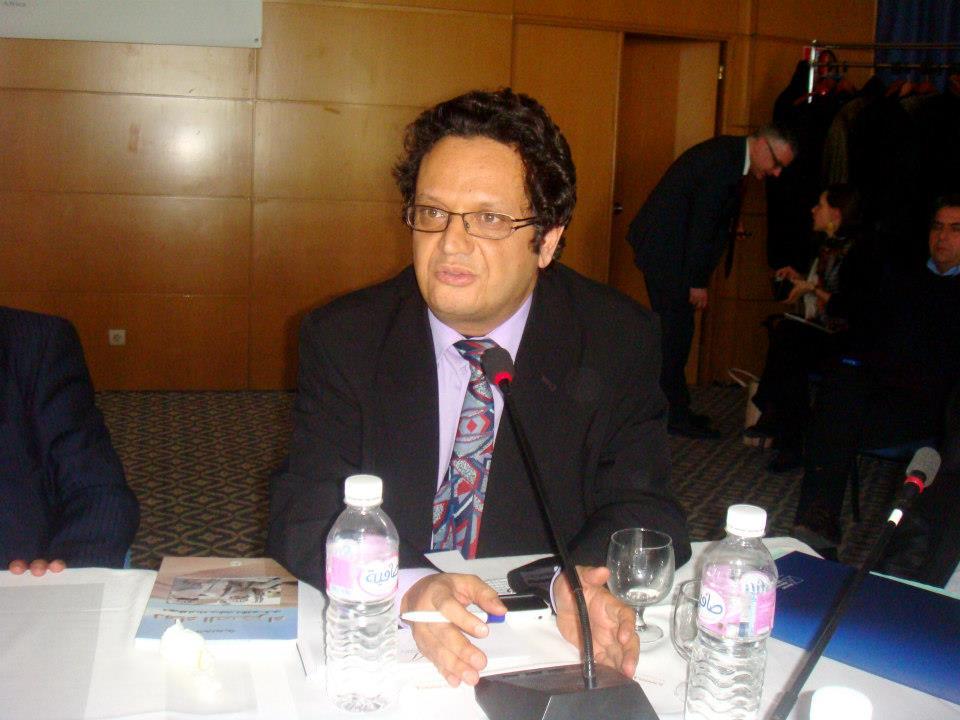 Printemps arabe ou Cauchemar arabe: Causes, Enjeux et Secrets