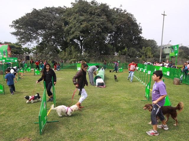Parque para perros en San Borja