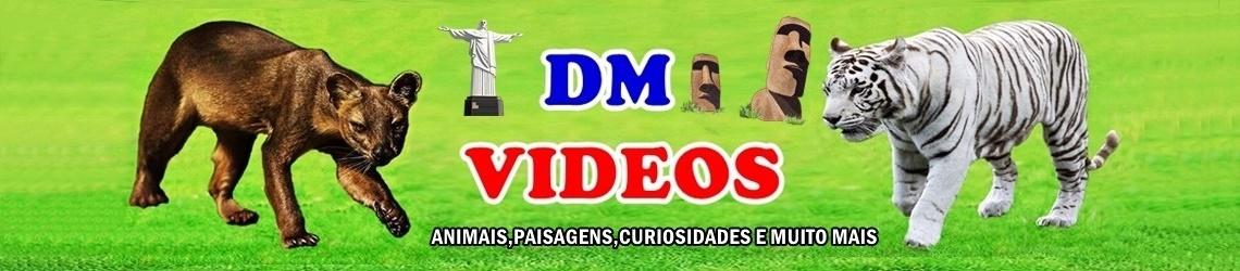 DM VIDEOS