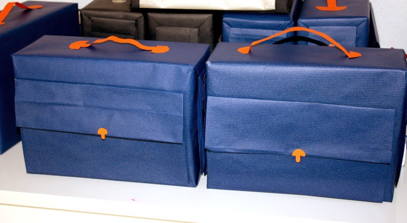 Pilot cases in blue and orange