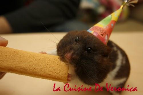Hamster, 倉鼠, 熊仔鼠, McHamHam, 新年, New Year