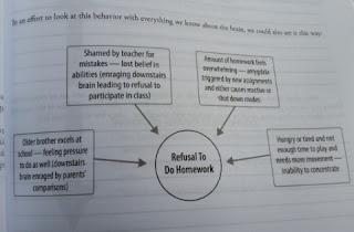 Whole Brain Child Workbook sample 2