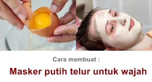 kegunaan telur untuk wajah