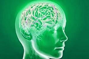 Marijuana May Prevent Memory Loss by Reducing Brain Inflammation Mjbrain-300x200