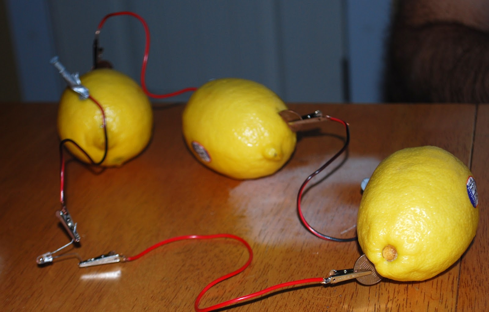 lemon battery science project One of my favorite science experiments to do easily at home is making a battery out of a lemon all you need is a lemon and a few simple supplies if you don't already have them lying around, a quick trip to the hardware store will take care of everything you need.