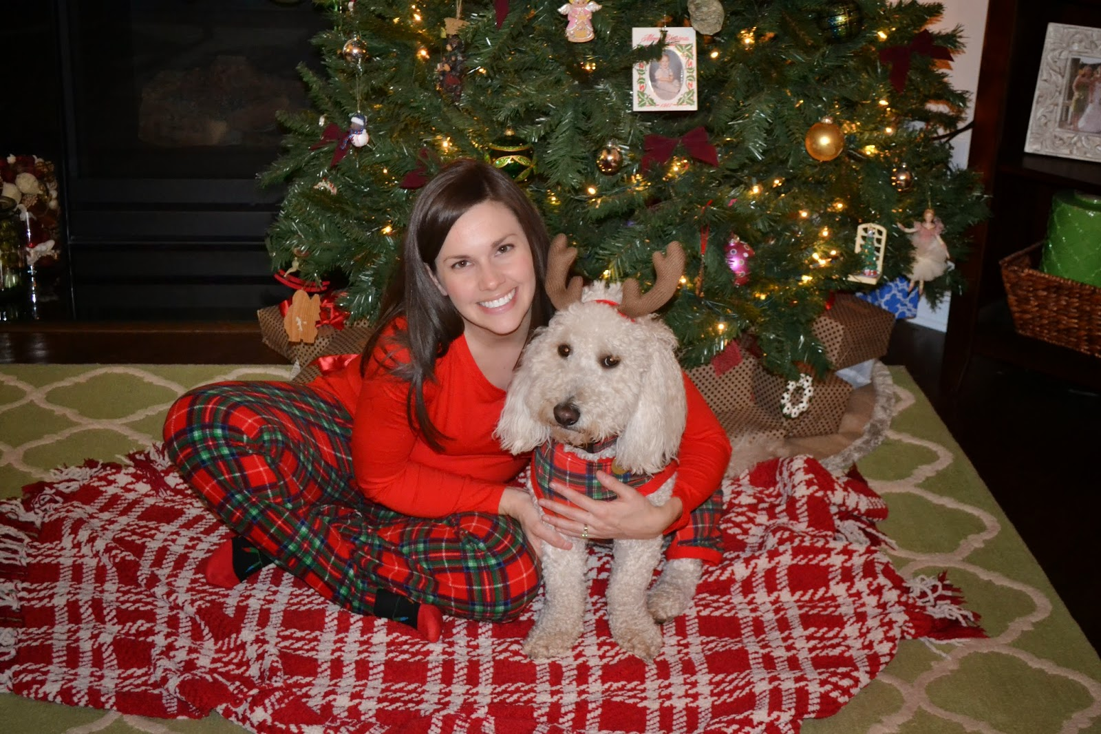 Dog Christmas Pajamas Target Monday  December 15  2014