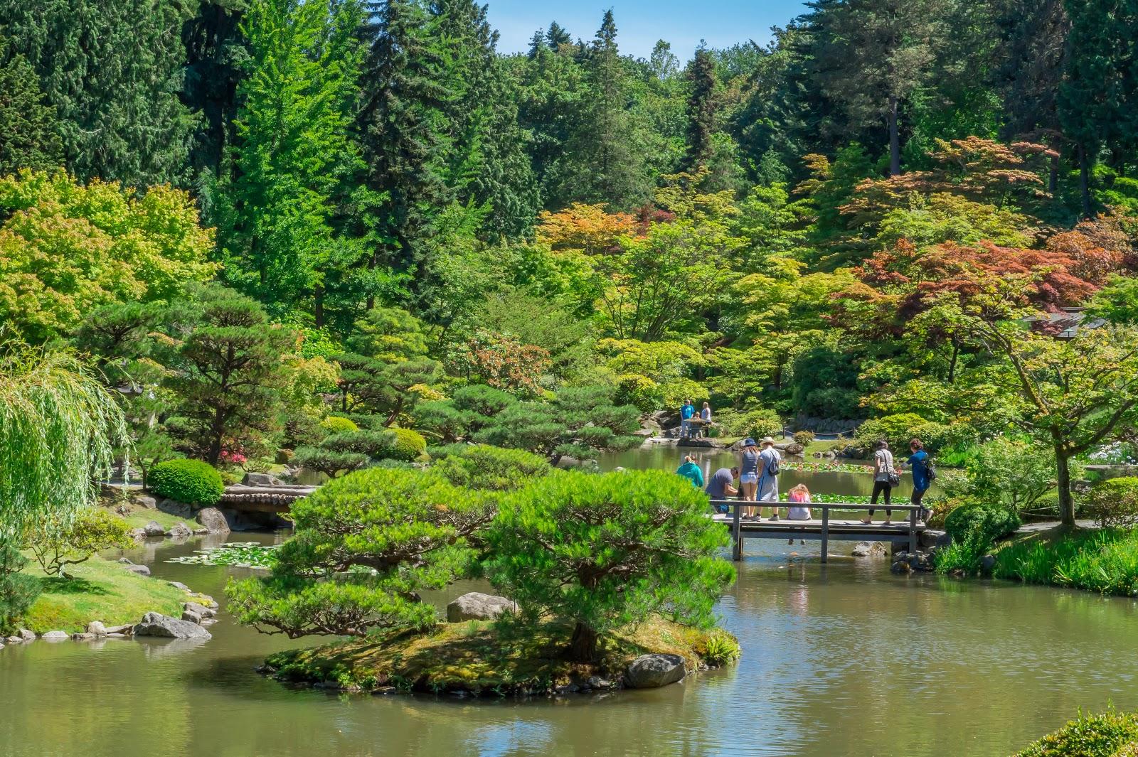 Сиэтловский японский сад оставил приятное впечатление.