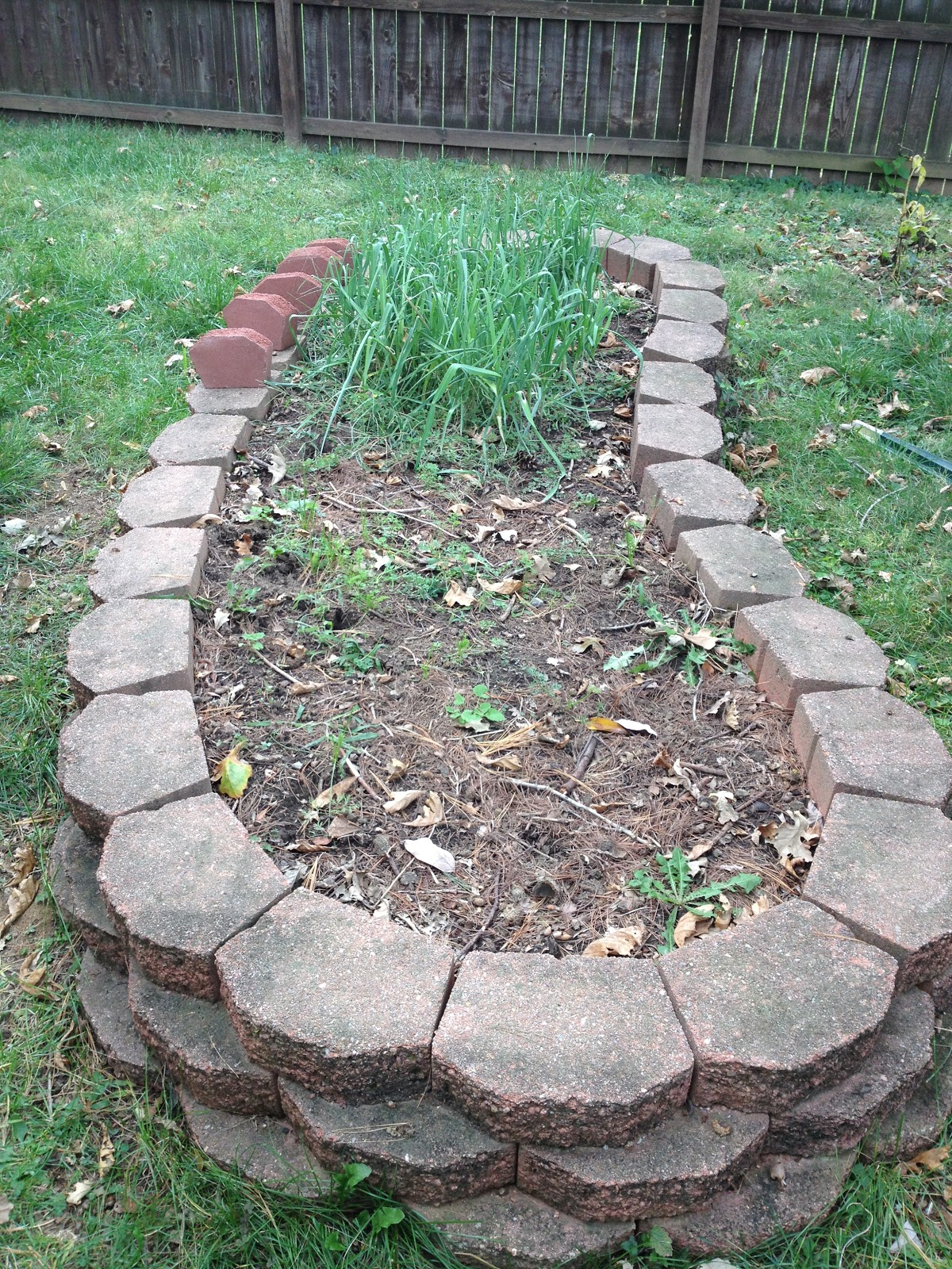 Ordinaire Raised Bed With Landscaping Bricks