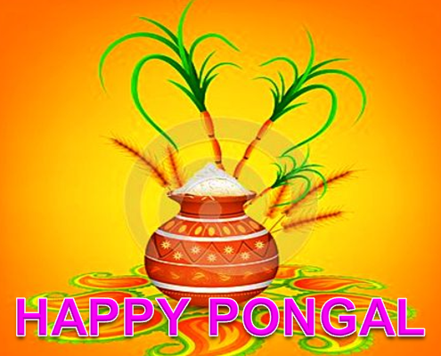 pongal 2018