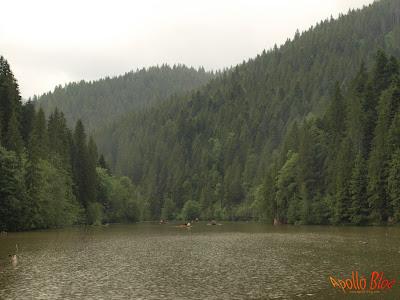 Plimbare cu Barca pe Lacul Rosu