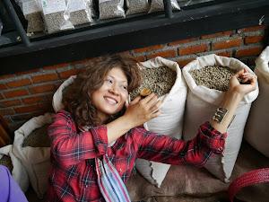 Arabica Yoddoi Doichaang Green Coffee Beans,Chiangrai ,Thailand