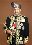 D.Y.M.M Tuanku Syed Sirajuddin
