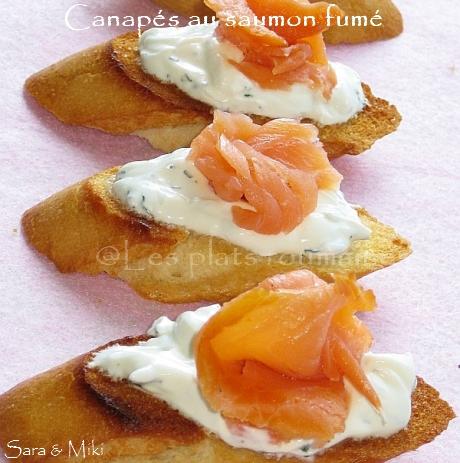 Les plats roumaines canap s au saumon fum for Canape au fromage