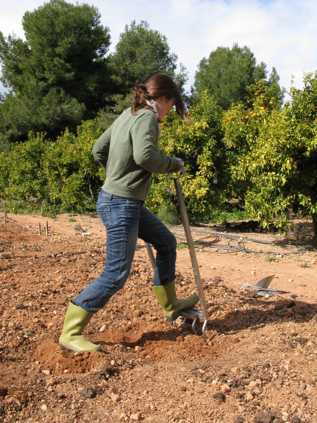 Garden center ejea aireando la tierra de nuestro jard n for Tierra para jardin