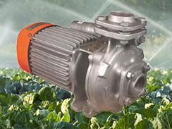 Kirloskar Single Phase Monoblock Pump 25x25 KDS-128+ (1HP) Online, India - Pumpkart.com