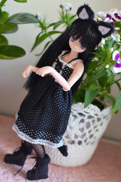 aika neko-san doll