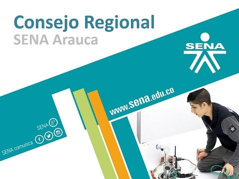 Información Consejo Regional