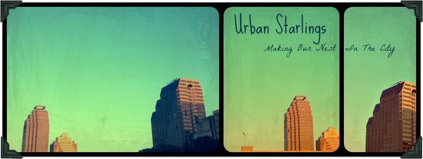 Urban Starlings