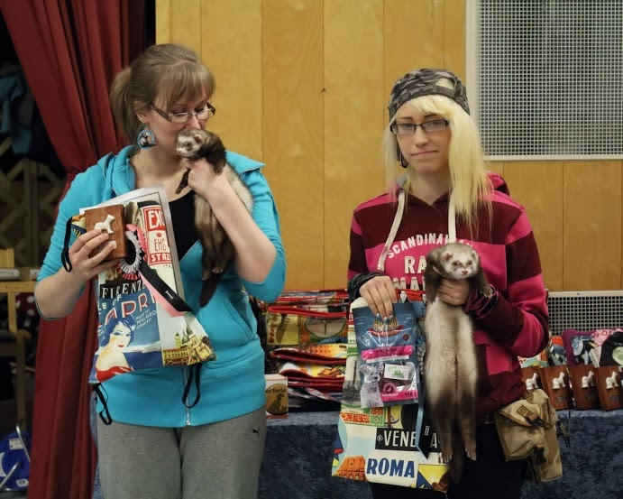 frettinäyttely+ferret+show+winning+2.sija+wcwfs
