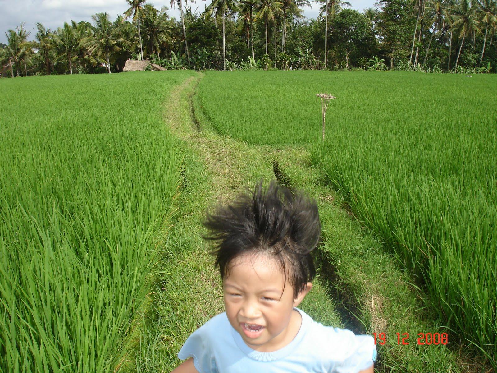http://1.bp.blogspot.com/-0_llXLlAuTU/TgcJz3wYp8I/AAAAAAAAAFY/A0sUo2rpSjs/s1600/Bali+2008+299.jpg