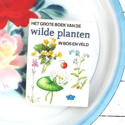 Het grote boek van Wilde planten in bos en veld. Drawings by E. Demartini en V. Nicova, thrifted, vintage, ByHaafner, emaille plate