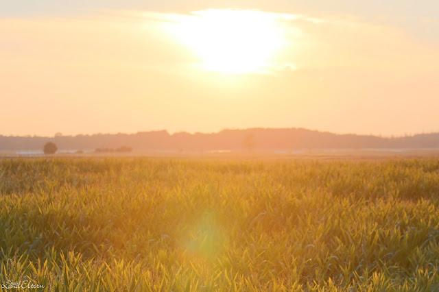 Stadtlandeltern - Ostsee - Fischland-Darss-Zingst - Sonnenuntergang