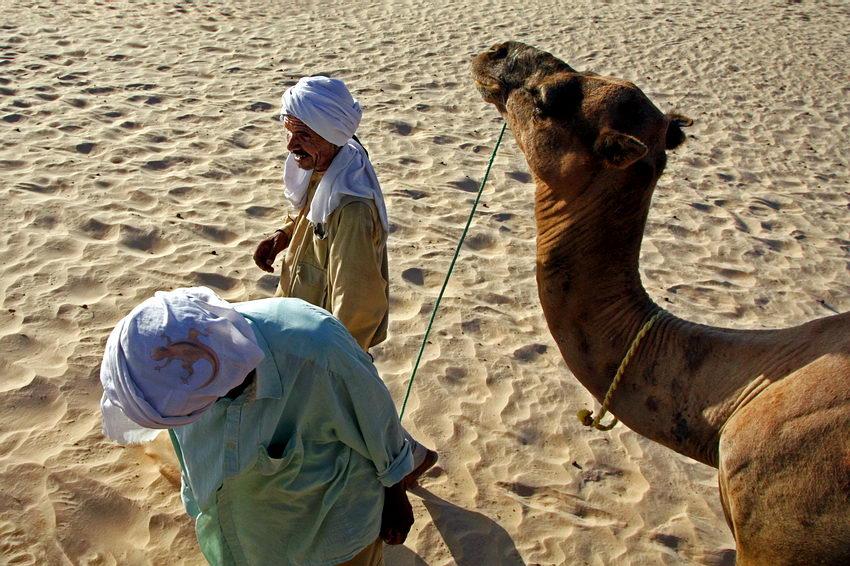 Dois condutores de camelo com um animal à rédea, vistos de cima (Fotógrafo não visível mas em cima de outro camelo)