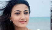 Tamil actress neelam gouhrani latest cute photosho…