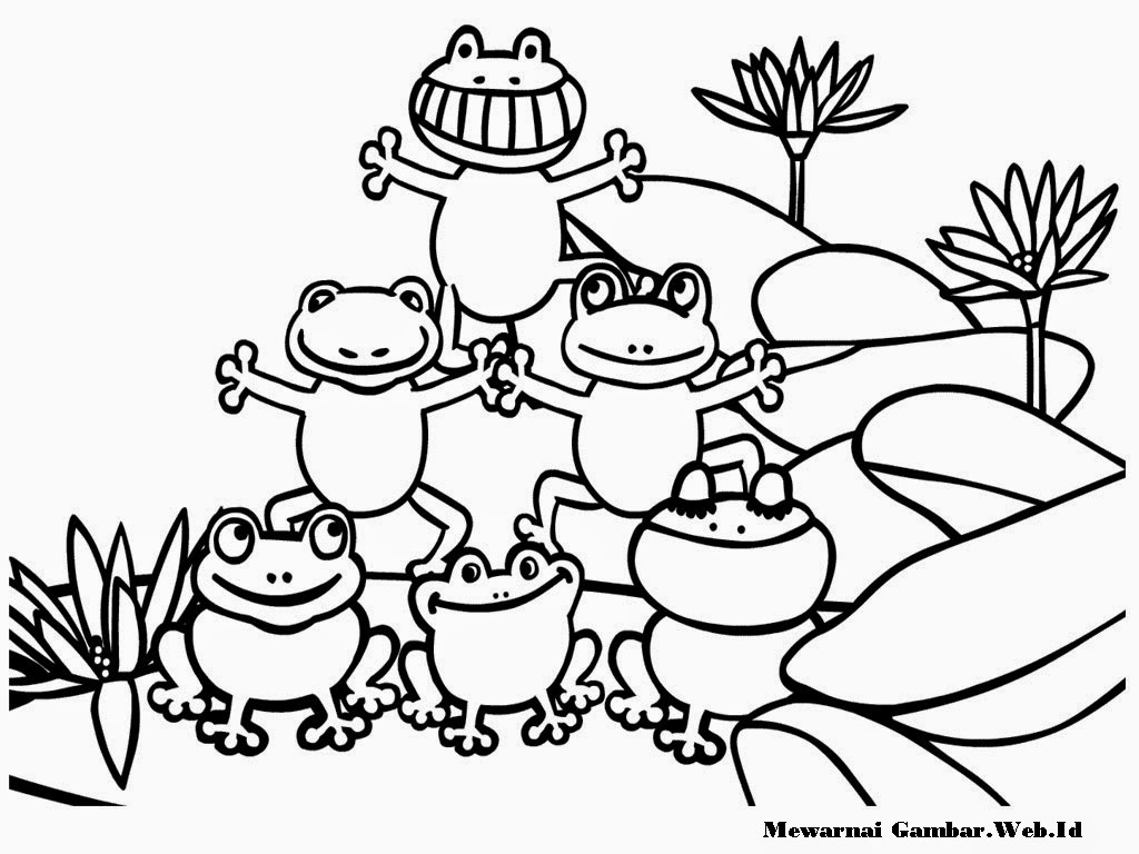 gambar katak lucu untuk mewarnai