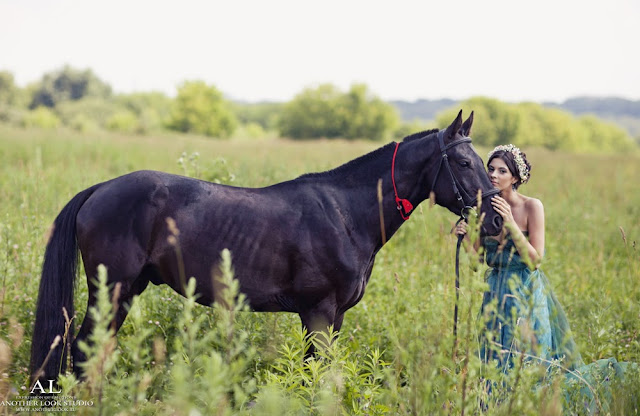 фотосессия на поле с лошадью