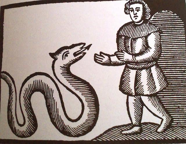 la serp de la font. Encants de Girona