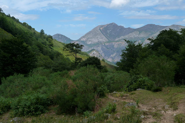 Pico Retriñón desde El Mayéu del Gumial