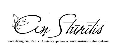 Āņ Stūrītis