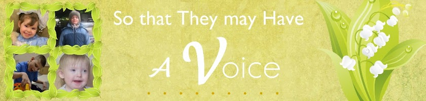 So That They May Have a Voice