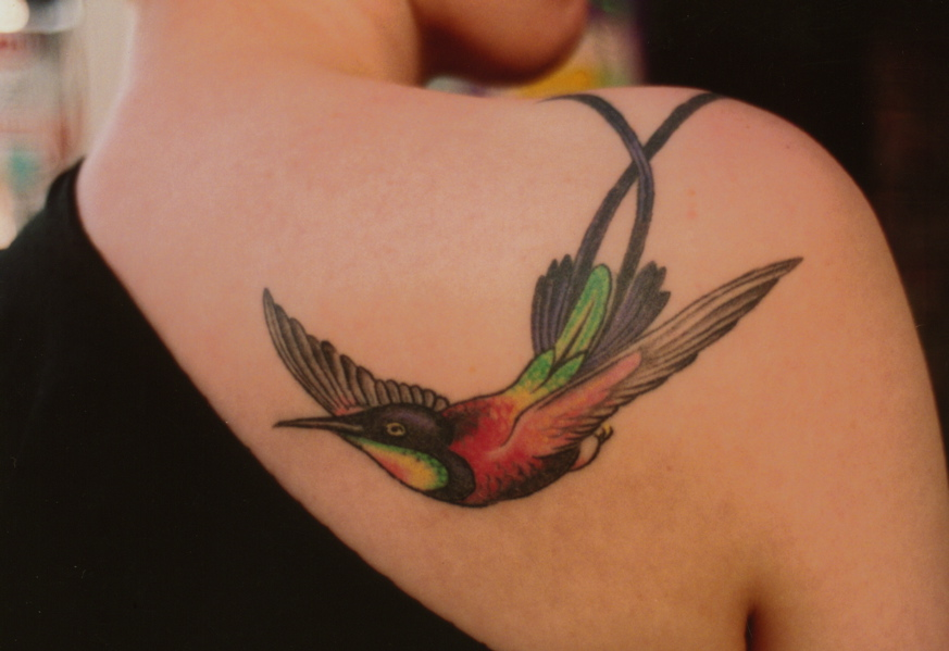 The Owners Remain Excited Like A Hummingbird In A Garden This Tattoo