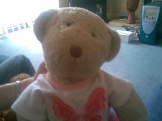 Amy the teddybear