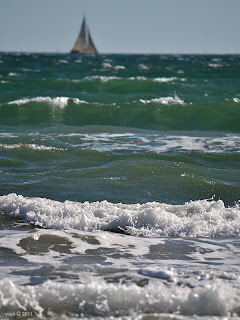 sailing through the surf